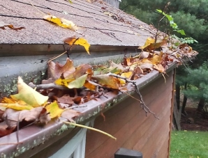Greater Ottawa clogged gutters